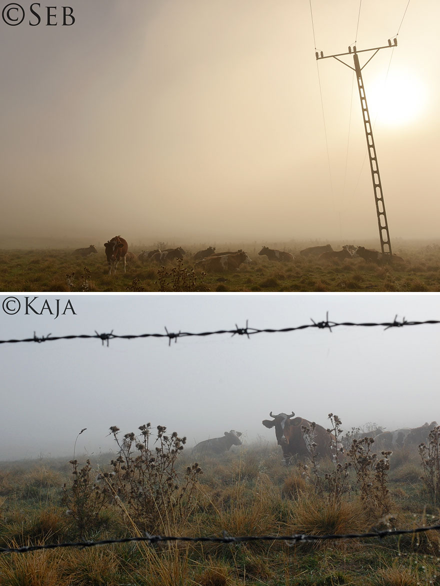 duelo-fotografico-padre-seb-hija-kaja-sindrome-down (1)