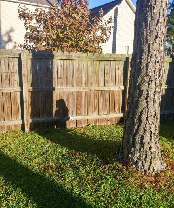 ninos-jugando-escondite (5)