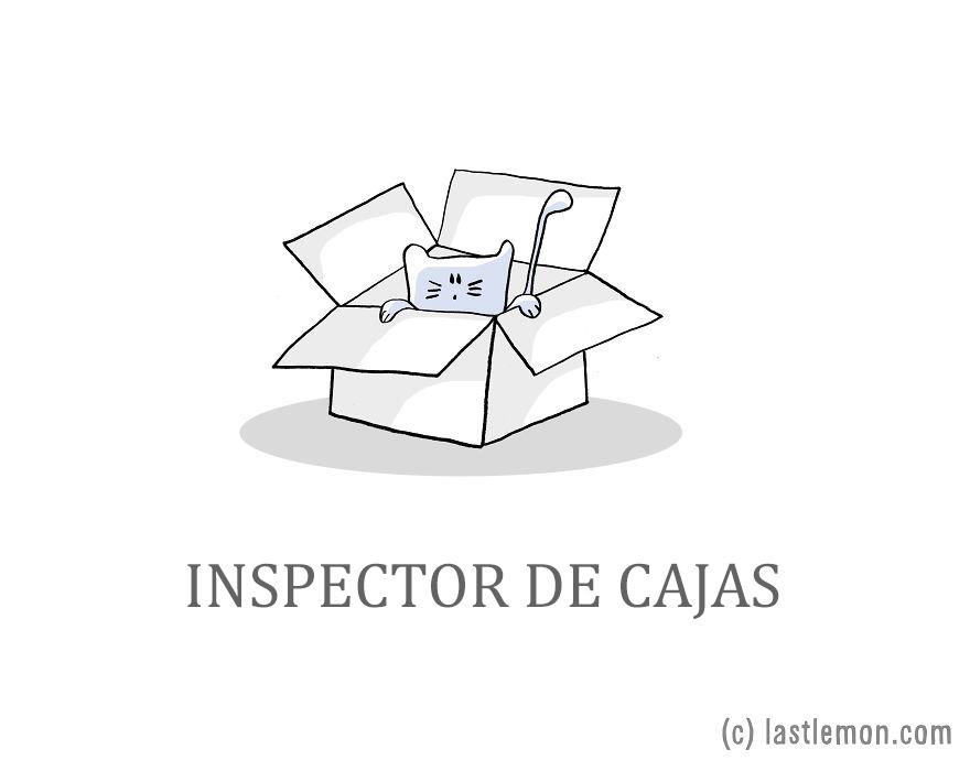 trabajos-gatos-lastlemon-4