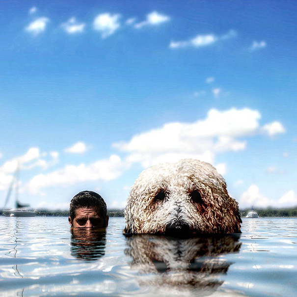 aventuras-juji-perro-gigante-photoshop-christopher-cline (3)