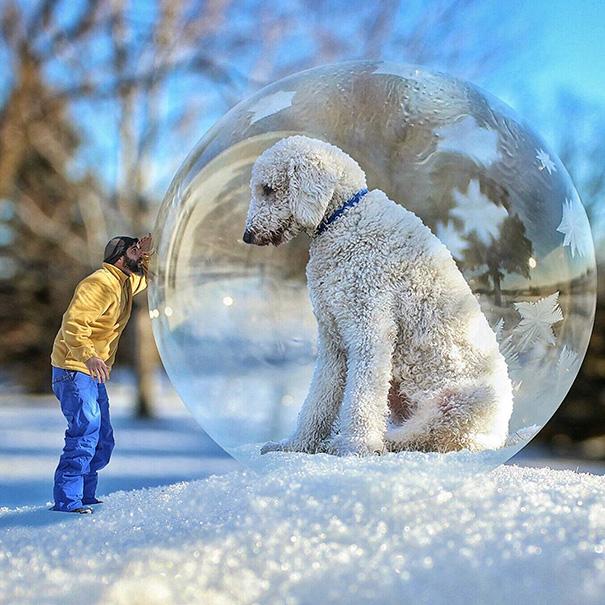 aventuras-juji-perro-gigante-photoshop-christopher-cline (9)