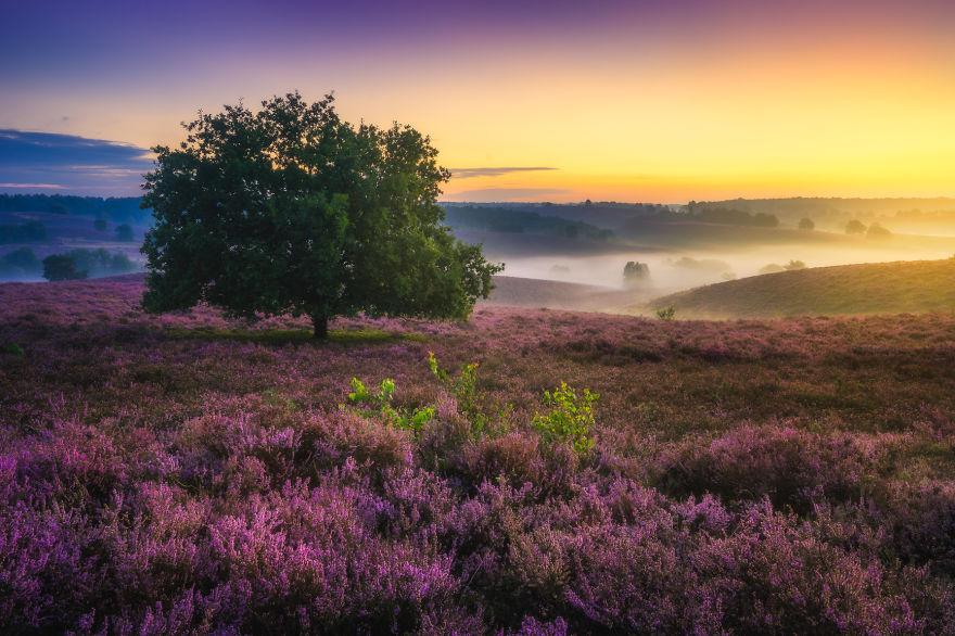 fotos-paisajes-holanda-albert-dros (19)
