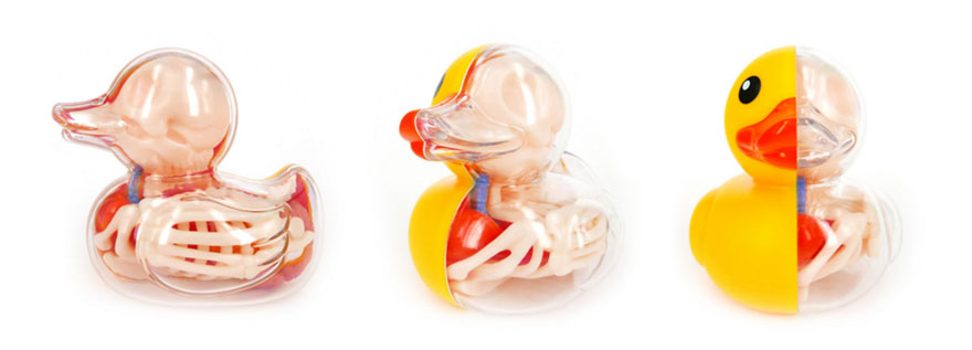 globos-anatomia-animales-jason-freeny (1)