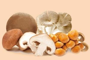 funghi-mix-del-borgo