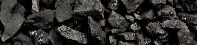 Wood vs Coal