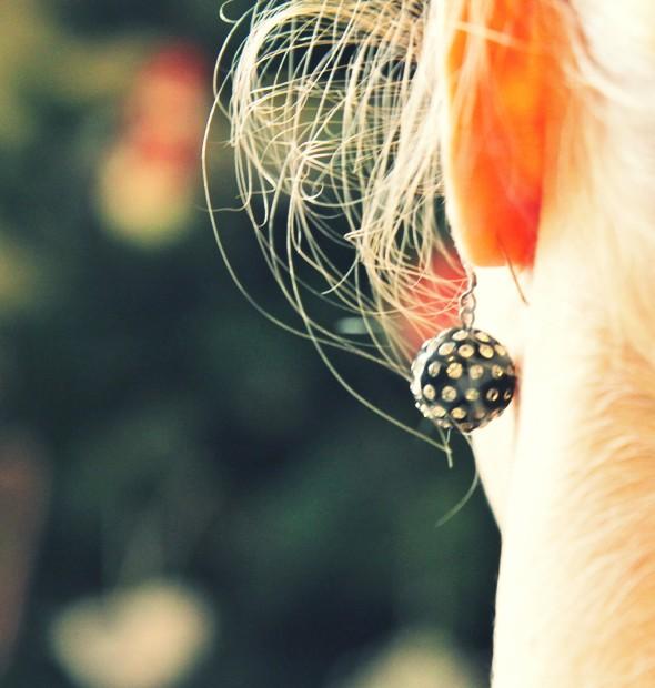 boucles d'oreilles agatha earrings _effected