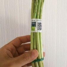 ネギなんかの茎菜類を長持ちさせる方法