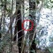 狩りバカ日誌2015年1月24日カモ猟実地04
