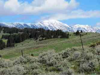 Stublar Road Jackson Creek Bridger View 1