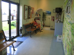 Pet owner and pet dog sit in the Basic Pet Care Animal Hospital waiting room.