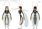 Cartoon Mosquito Character Design