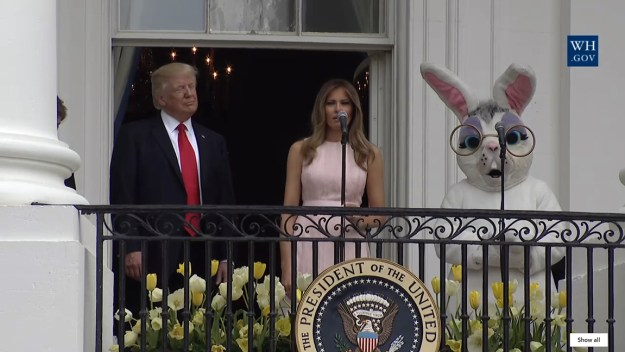 That's the Bunny on the right -- the one with the shocked expression.