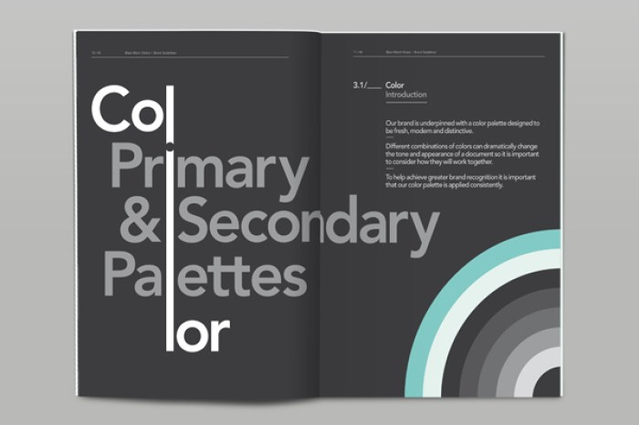 brand style guide 03c
