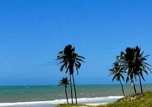 Pacotes de Viagens na Praia do Forte