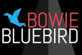 Bowie Bluebird – Intervista