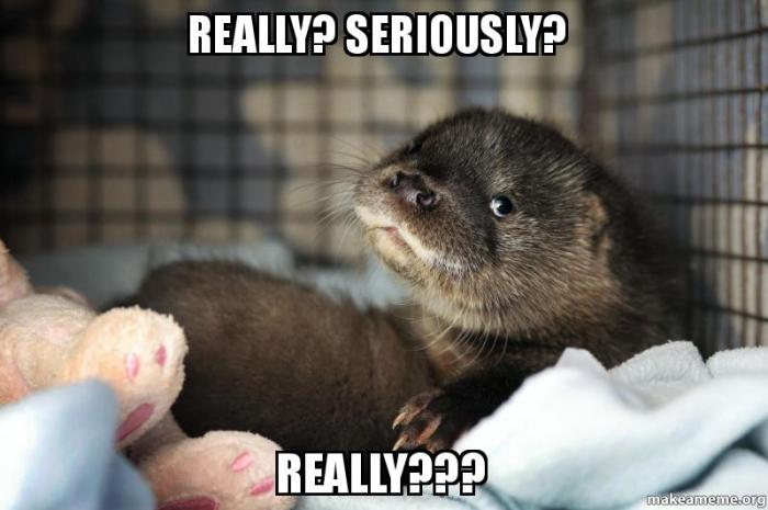 really...seriously otter