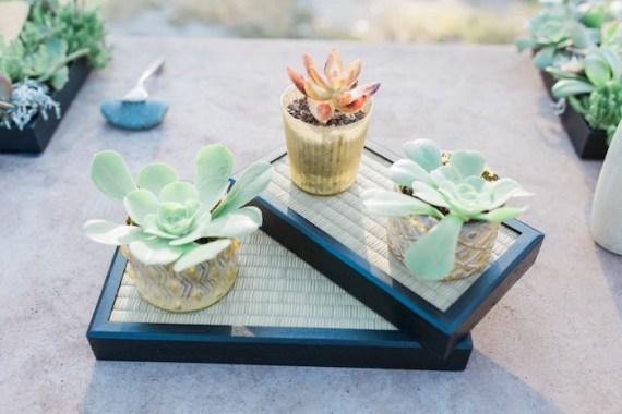 Colorful-Au-Natural-Bridal-Shower-Succulents
