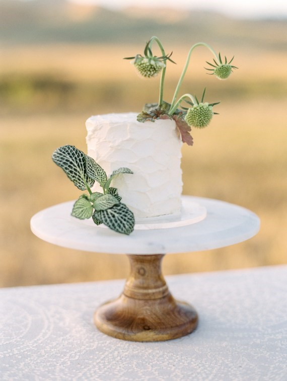 Dreamy Outdoor Bridal Shower cake with toppers