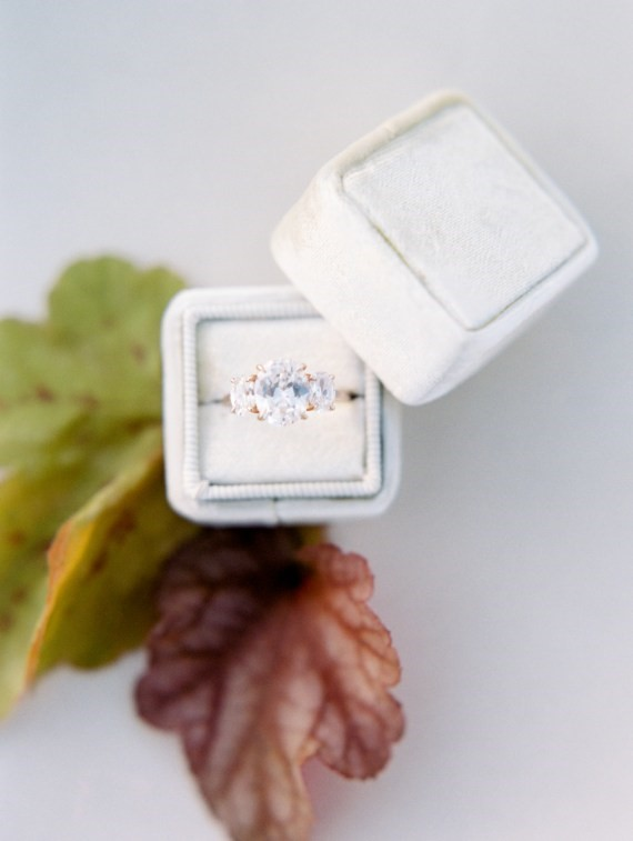 Dreamy Outdoor Bridal Shower ring display
