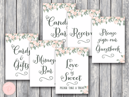 Vintage Soft Pink Peonie Bridal Shower Table Signs Package