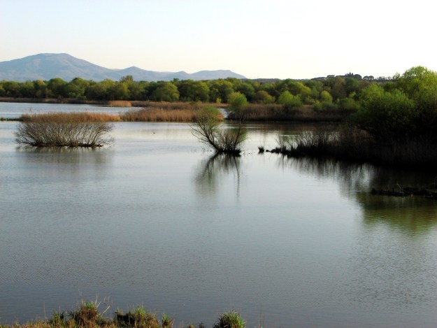Lake Alviano Umbria Italy