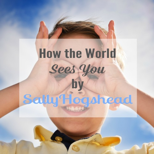 How the World Sees You by Sally Hogshead