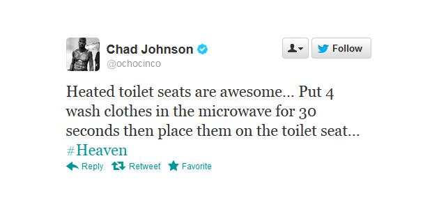 heated toilet