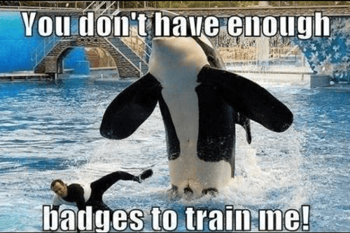 you don't have enough badges to train me