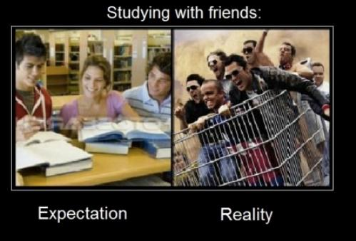 studying with friends expectation vs reality
