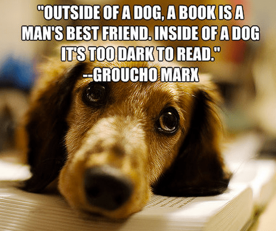 """Outside of a dog, a book is a man's best friend. Inside of a dog it's too dark to read."""