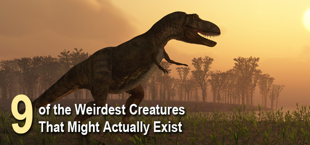 Weirdest Mythical Creatures That Actually Exist