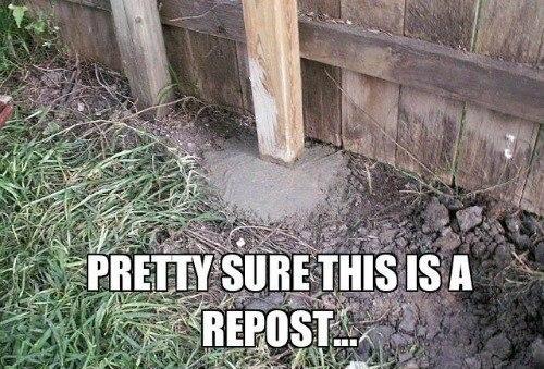 Facebook/Funny Fuggin