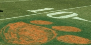Someone Painted a Clemson Tiger Paw on South Carolina's Football Field