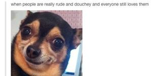 49 Of The Funniest Things Ever Shared On Tumblr