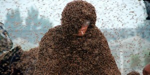 Congrats To This Maniac Who Set World Record For Having Over 1 Million Bees On Him