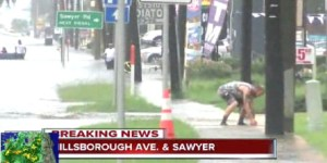 Tampa Is So Flooded That People Are Catching Fish In The Street With Their Bare Hands