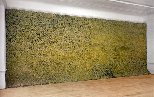 Olafur Eliasson's Moss Wall, living arctic moss installed in a gallery