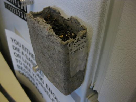 planter drying on the fridge
