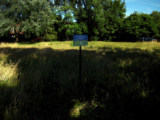 the sign at the park