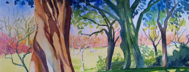 Dianne Gilmour: Watercolours 26th Jan to 29th Feb