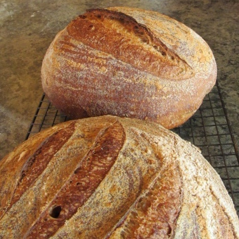 This morning's bake - French sourdough