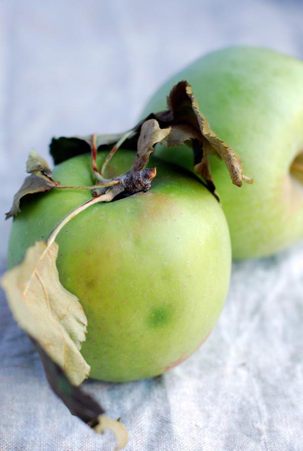 Mutsu apples, via brooklynsupper.net; © Brooklyn Supper 2012, all rights reserved