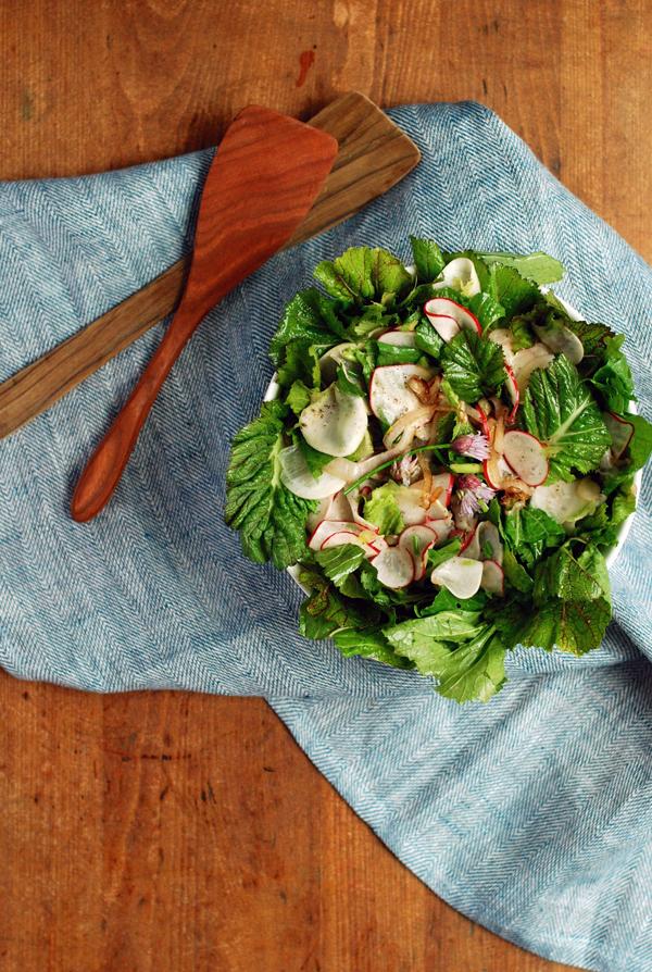 harukei turnip, radish, and bitter greens salad sm 5