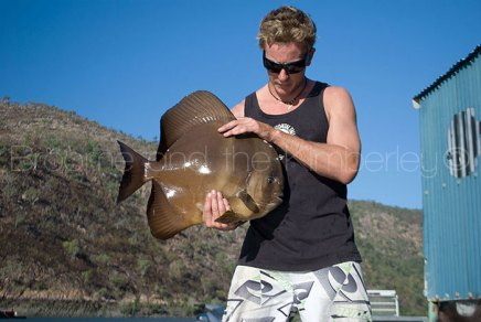 Warwick the Batfish
