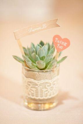 wedding-favors-sukkulent-bryllup