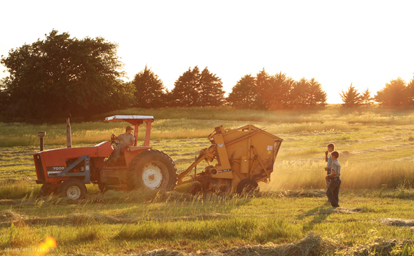 6-11-13-2-baling-hay