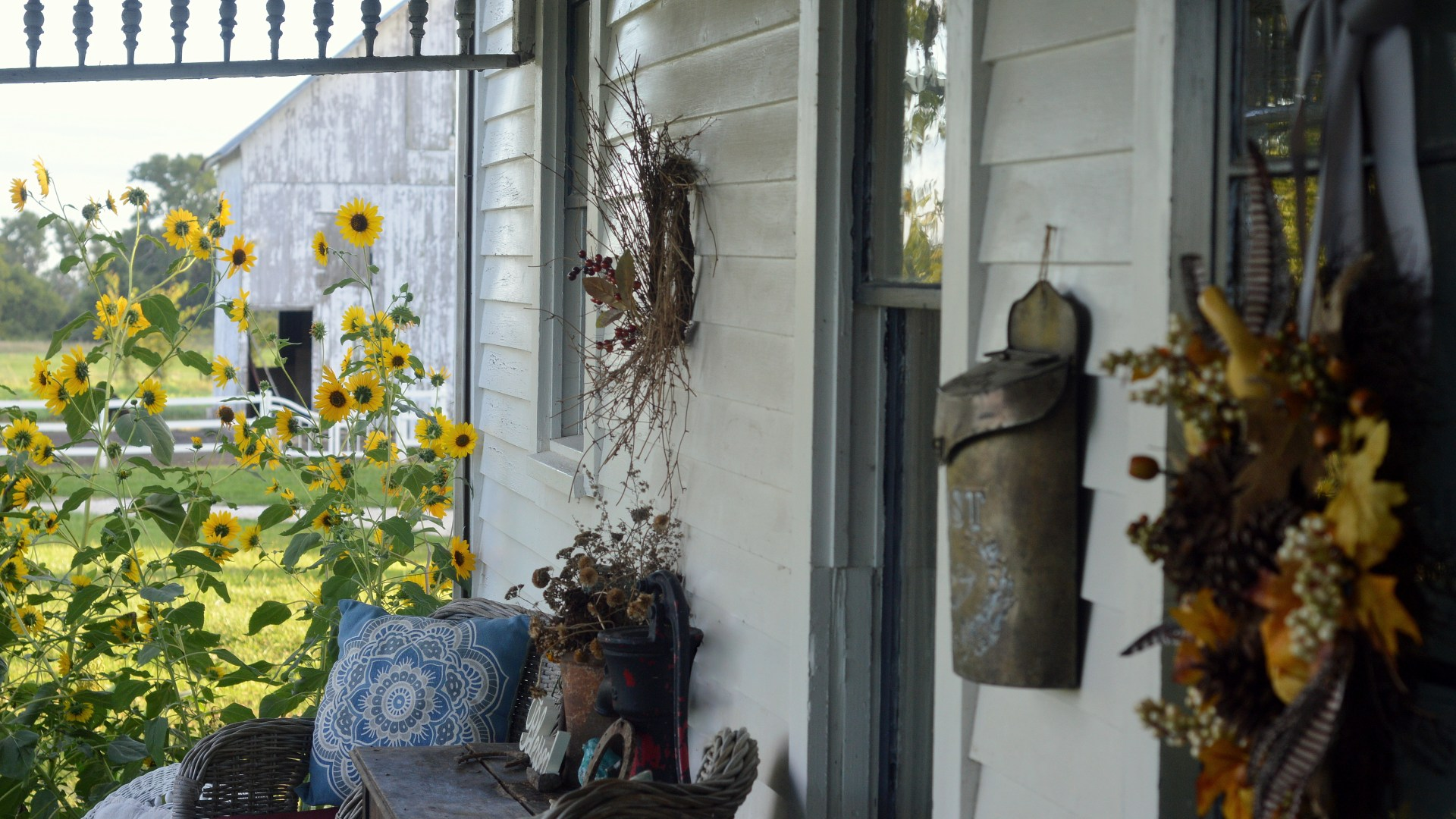 Effortless Fall Porch Decor & Wildflower Gardening Video