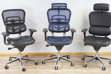 I 9 Most Common Problems With The Raynor Ergohuman Chair
