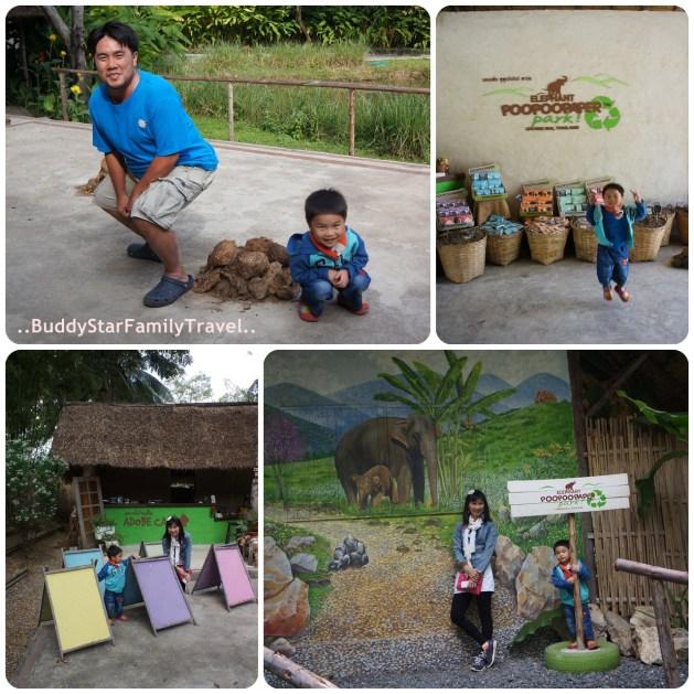 พาลูกเที่ยวเชียงใหม่,พาครอบครัวเที่ยวเชียงใหม่,พาลูกเที่ยว,พาครอบครัวเที่ยว,เชียงใหม่,ที่เที่ยว,เด็ก,pantip,elephant,poo,paper,park,กระดาษ,มูลช้าง,ขี้ช้าง