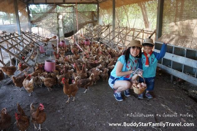 พาลูกเที่ยวเขาใหญ่, ที่เที่ยว, เด็ก, เขาใหญ่,เก็บไข่, ฟาร์มหมอปอ